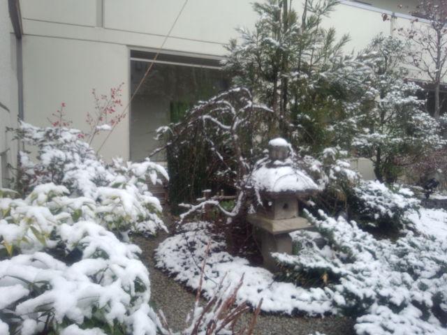 雪化粧 エスパス一乗寺