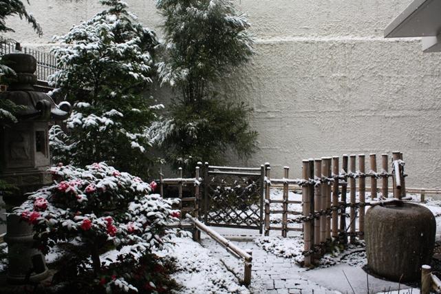 雪だブログ用